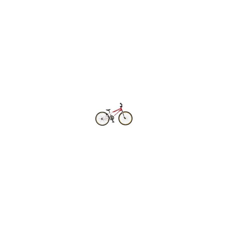 Bicicleta Free Agent Team Junior 2015